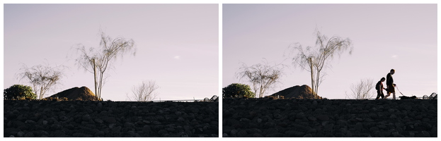 Tempe Rio Salado January Afternoon Walking the Dog Diptych