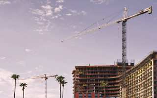 Tempe Summer Downtown Construction Tower Cranes Palm Trees