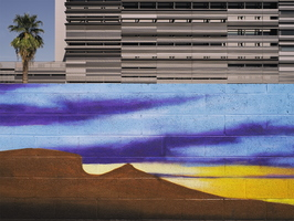 Downtown Tempe Desert Mural Palm tree Building